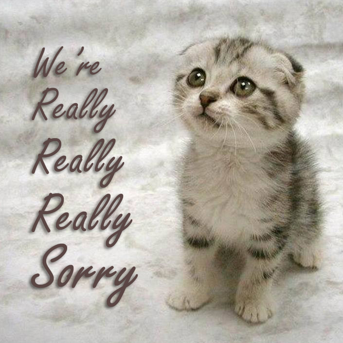 We're really sorry. Here's a kitten.